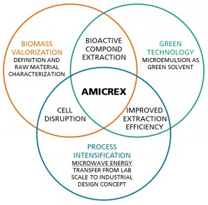 AMICREX combines different technologies.(Click to enlarge.)